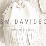 J&Mデヴィッドソンの白のカーニバル